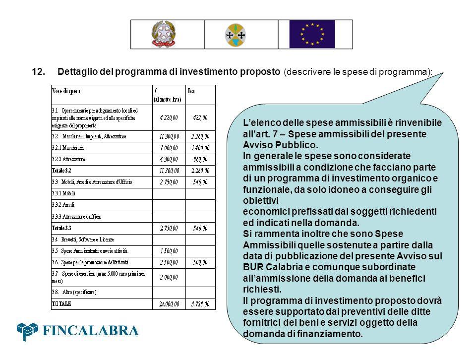 12. Dettaglio del programma di investimento proposto (descrivere le spese di programma):