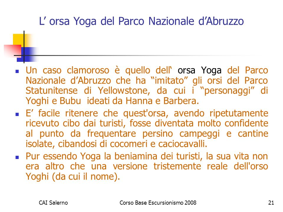L' orsa Yoga del Parco Nazionale d'Abruzzo