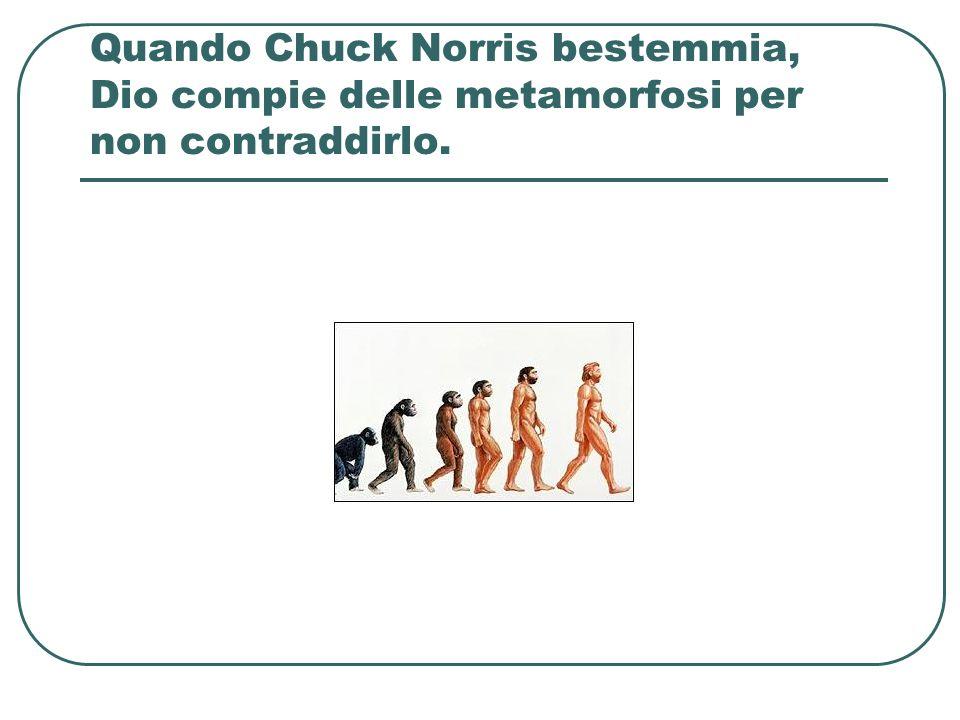 Quando Chuck Norris bestemmia, Dio compie delle metamorfosi per non contraddirlo.