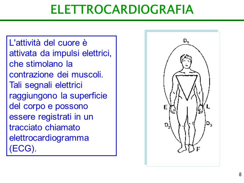 ELETTROCARDIOGRAFIA L attività del cuore è attivata da impulsi elettrici, che stimolano la contrazione dei muscoli.