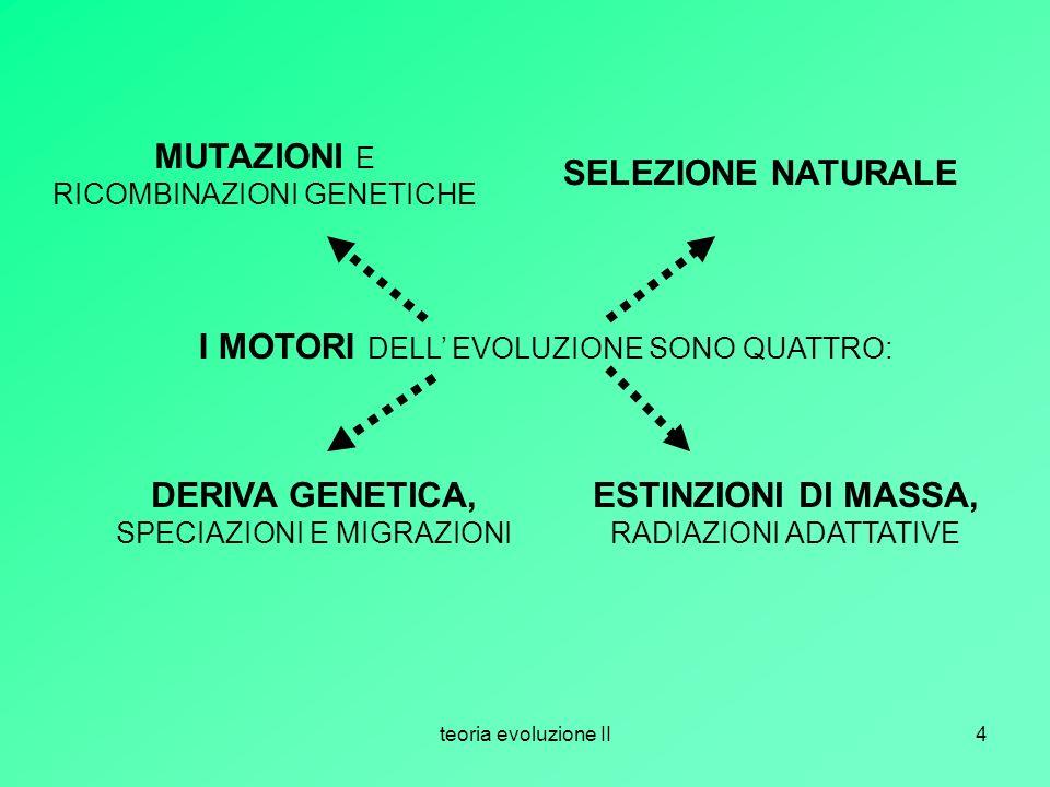 MUTAZIONI E RICOMBINAZIONI GENETICHE SELEZIONE NATURALE