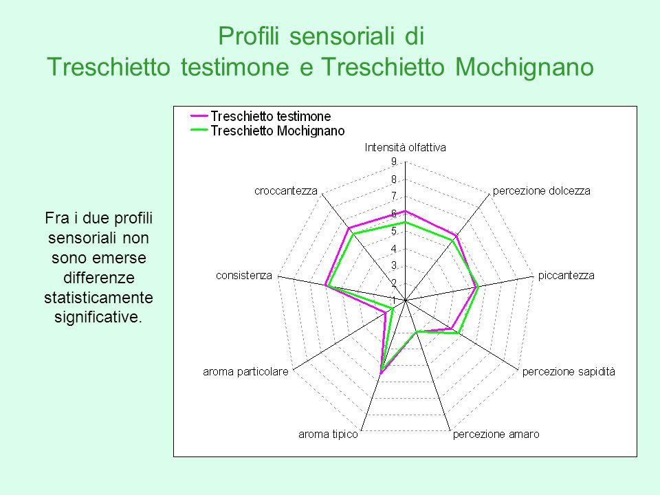 Profili sensoriali di Treschietto testimone e Treschietto Mochignano