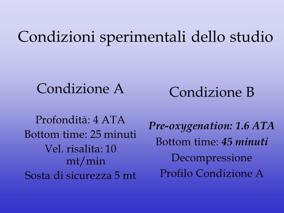 Condizioni sperimentali dello studio
