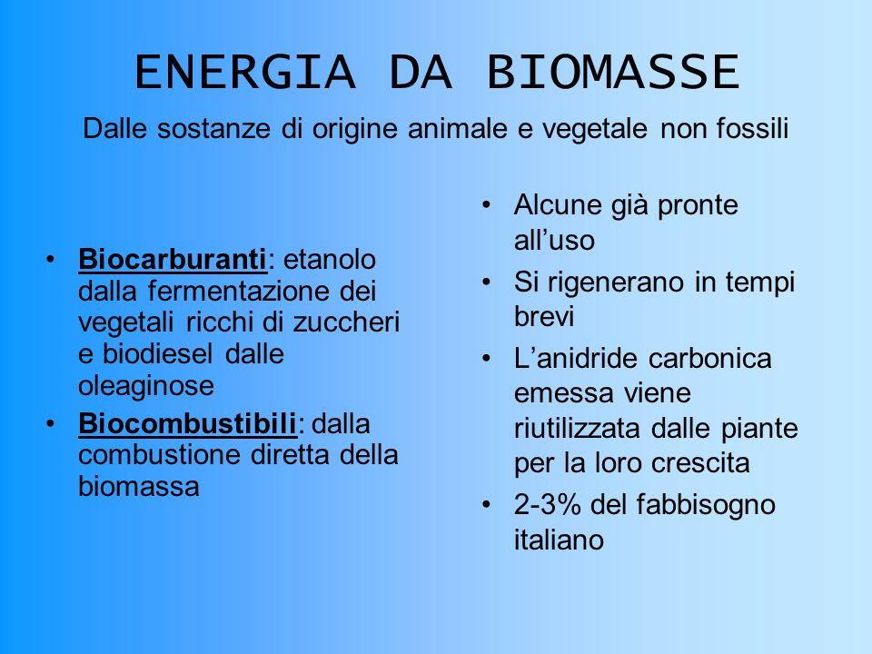 Dalle sostanze di origine animale e vegetale non fossili