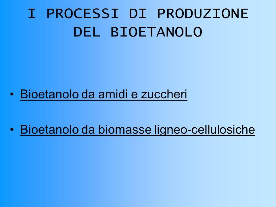 I PROCESSI DI PRODUZIONE DEL BIOETANOLO