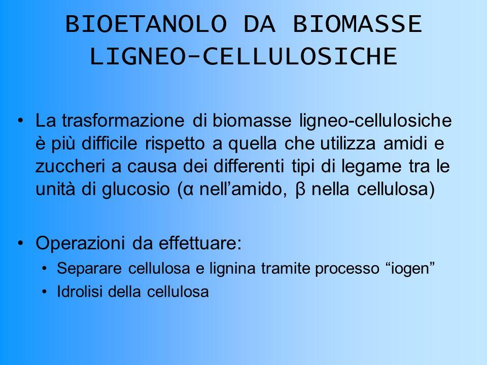 BIOETANOLO DA BIOMASSE LIGNEO-CELLULOSICHE