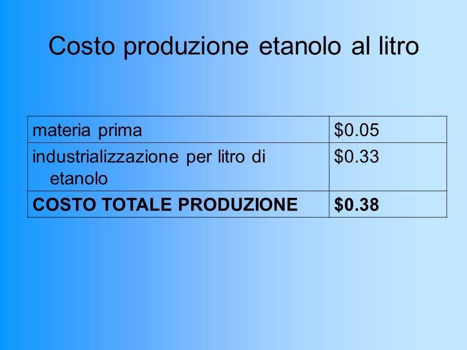 Costo produzione etanolo al litro