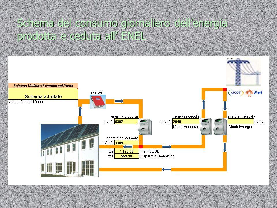 Schema del consumo giornaliero dell'energia prodotta e ceduta all' ENEL