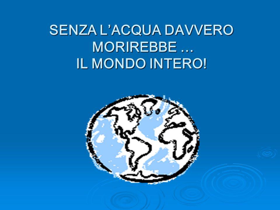 SENZA L'ACQUA DAVVERO MORIREBBE … IL MONDO INTERO!