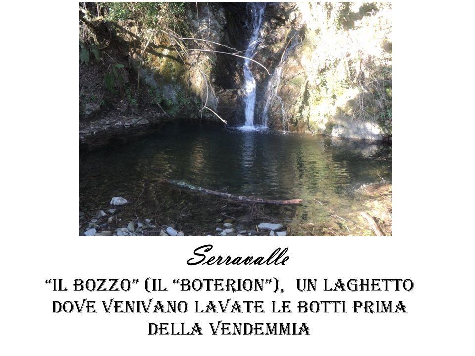 Serravalle Il bozzo (il boterion ), un laghetto dove venivano lavate le botti PRIMA DELLA VENDEMMIA