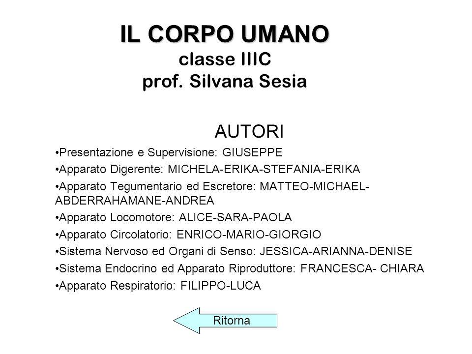 IL CORPO UMANO classe IIIC prof. Silvana Sesia