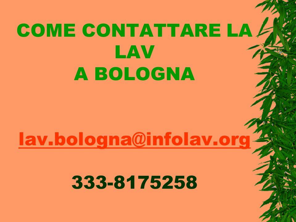 COME CONTATTARE LA LAV A BOLOGNA lav.bologna@infolav.org 333-8175258