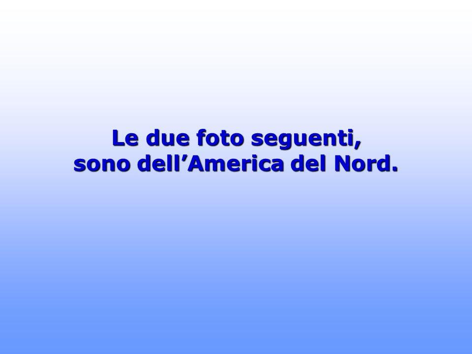 Le due foto seguenti, sono dell'America del Nord.