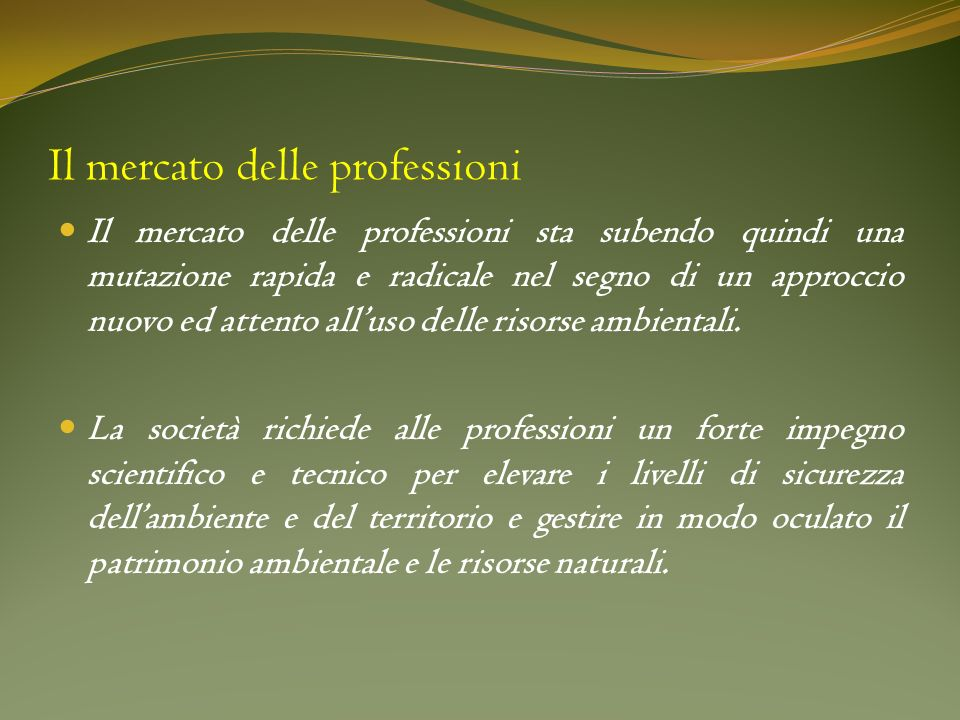 Il mercato delle professioni