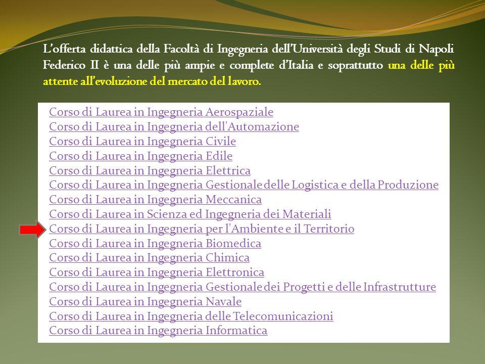 L'offerta didattica della Facoltà di Ingegneria dell'Università degli Studi di Napoli Federico II è una delle più ampie e complete d'Italia e soprattutto una delle più attente all'evoluzione del mercato del lavoro.