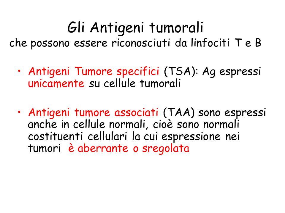 Gli Antigeni tumorali che possono essere riconosciuti da linfociti T e B