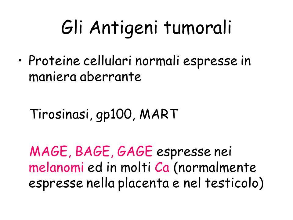 Gli Antigeni tumorali Proteine cellulari normali espresse in maniera aberrante. Tirosinasi, gp100, MART.