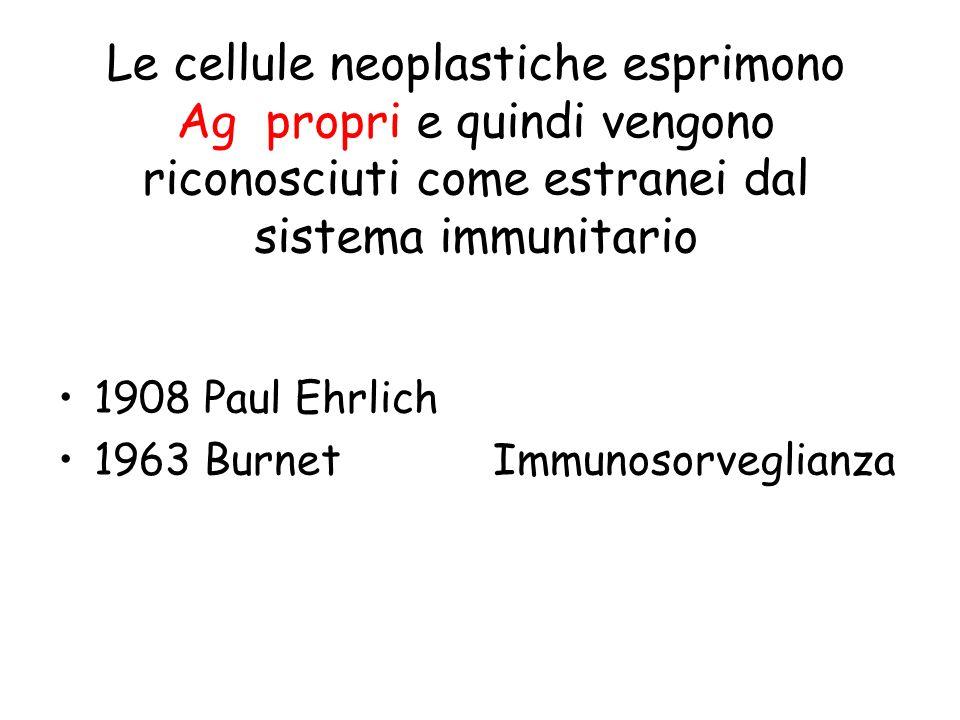 Le cellule neoplastiche esprimono Ag propri e quindi vengono riconosciuti come estranei dal sistema immunitario