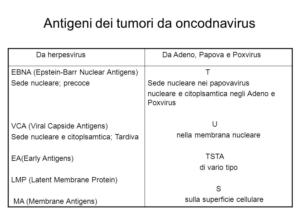 Antigeni dei tumori da oncodnavirus