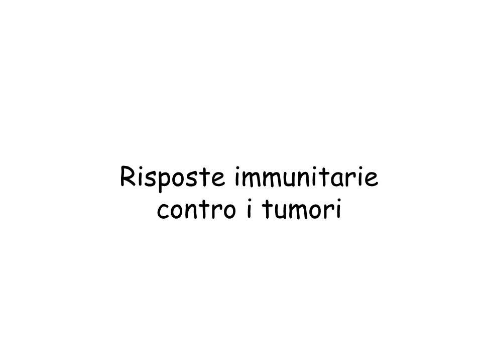 Risposte immunitarie contro i tumori