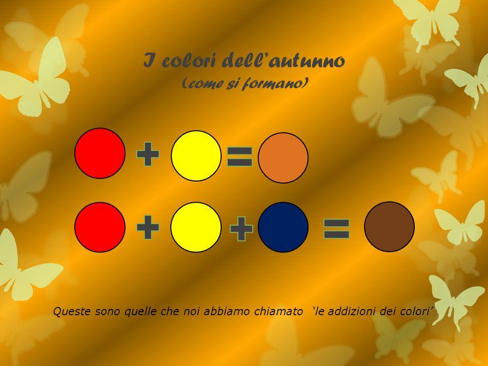 I colori dell'autunno (come si formano)