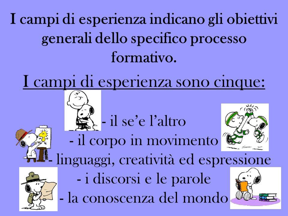 I campi di esperienza indicano gli obiettivi generali dello specifico processo formativo.