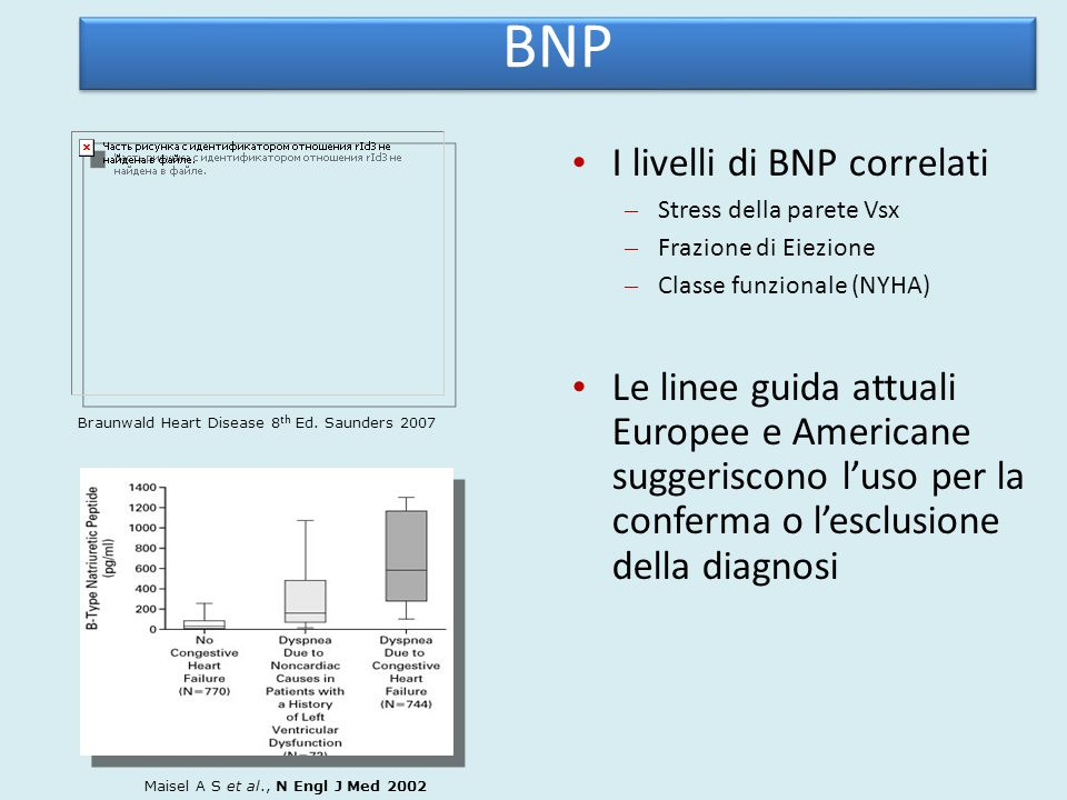 BNP I livelli di BNP correlati
