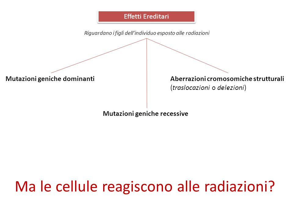 Ma le cellule reagiscono alle radiazioni