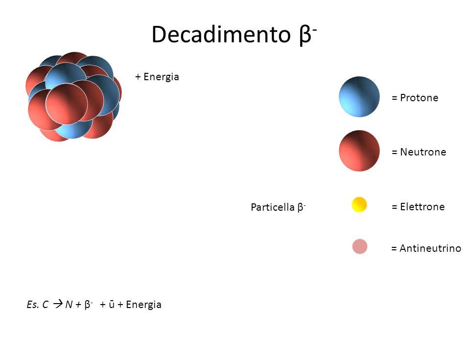 Decadimento β- + Energia = Protone = Neutrone Particella β-