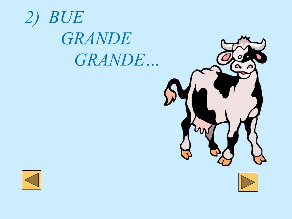 2) BUE GRANDE GRANDE…