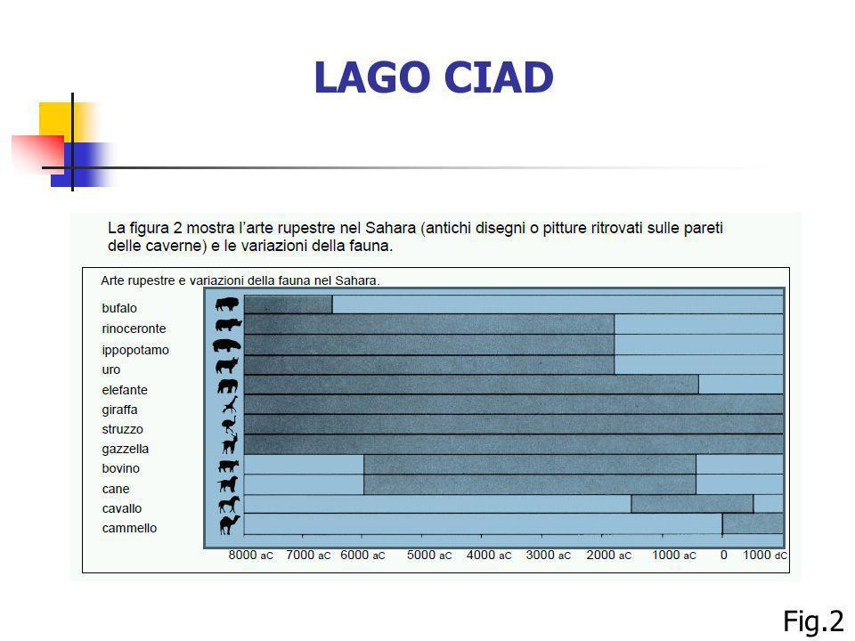 LAGO CIAD Fig.2 98