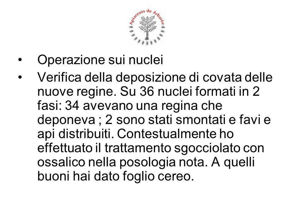 Operazione sui nuclei