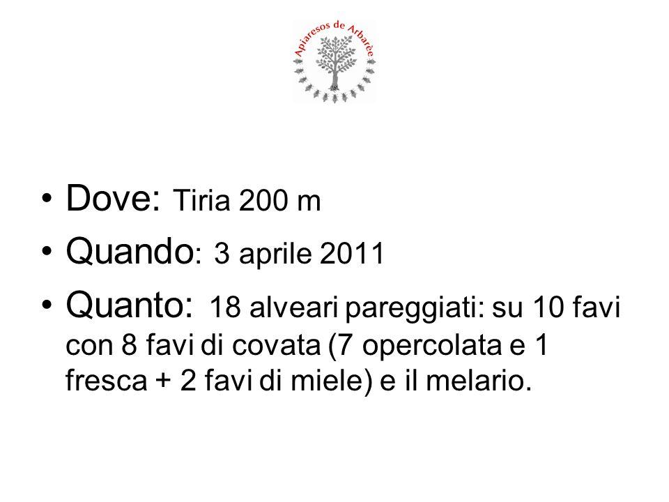 Dove: Tiria 200 m Quando: 3 aprile 2011.