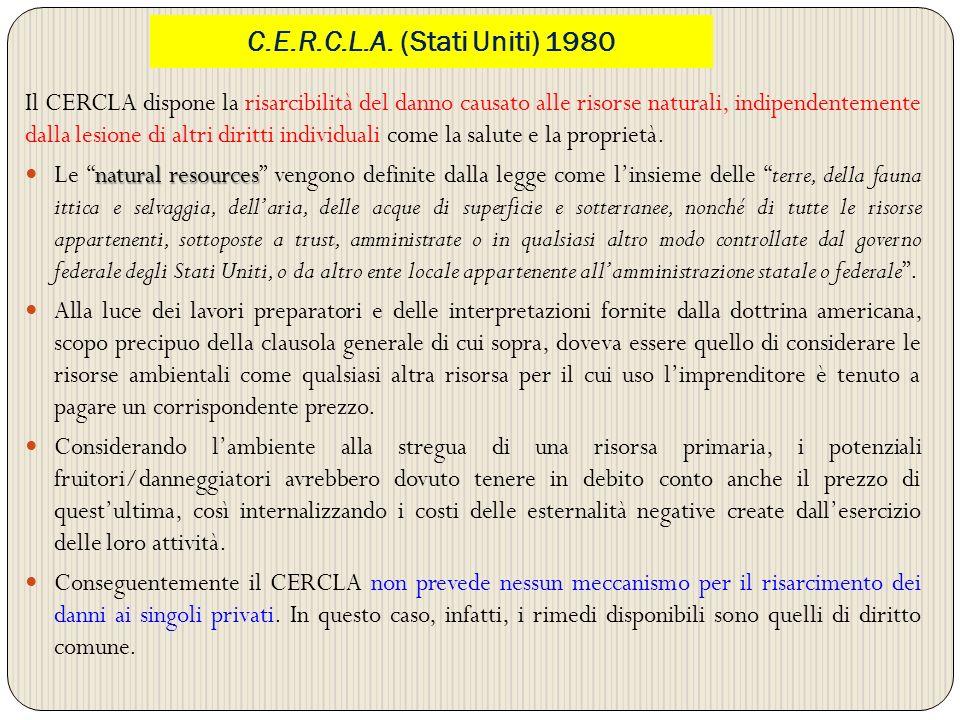 C.E.R.C.L.A. (Stati Uniti) 1980
