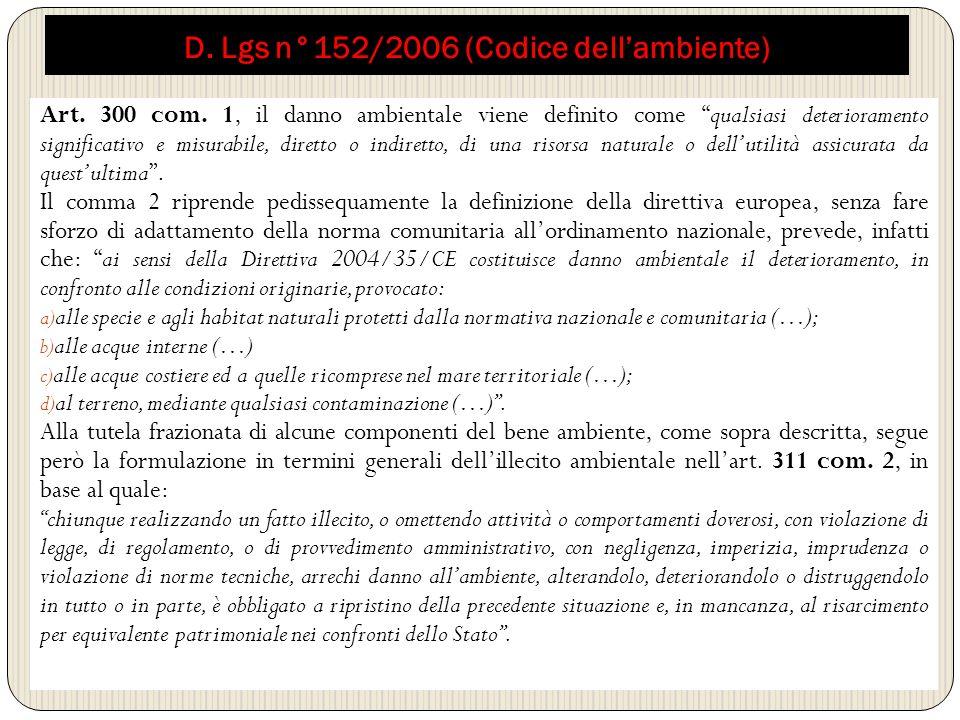 D. Lgs n°152/2006 (Codice dell'ambiente)