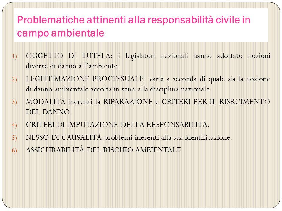 Problematiche attinenti alla responsabilità civile in campo ambientale
