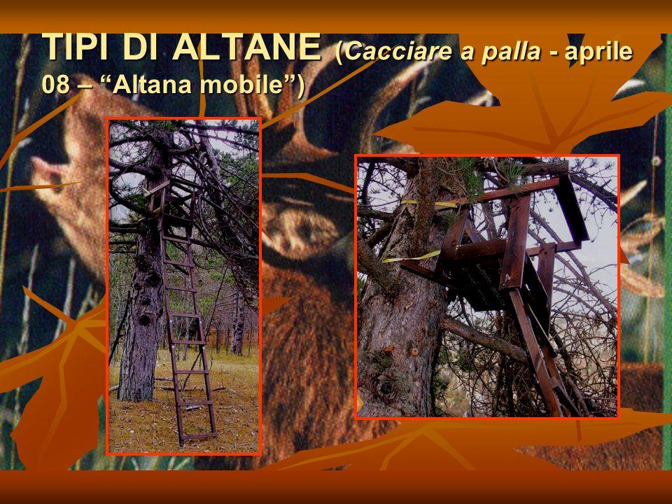 TIPI DI ALTANE (Cacciare a palla - aprile 08 – Altana mobile )