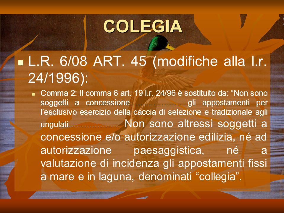 COLEGIA L.R. 6/08 ART. 45 (modifiche alla l.r. 24/1996):