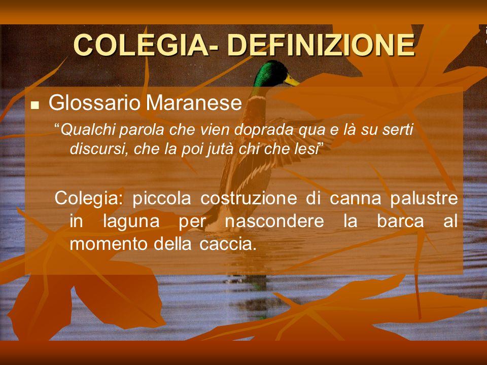 COLEGIA- DEFINIZIONE Glossario Maranese