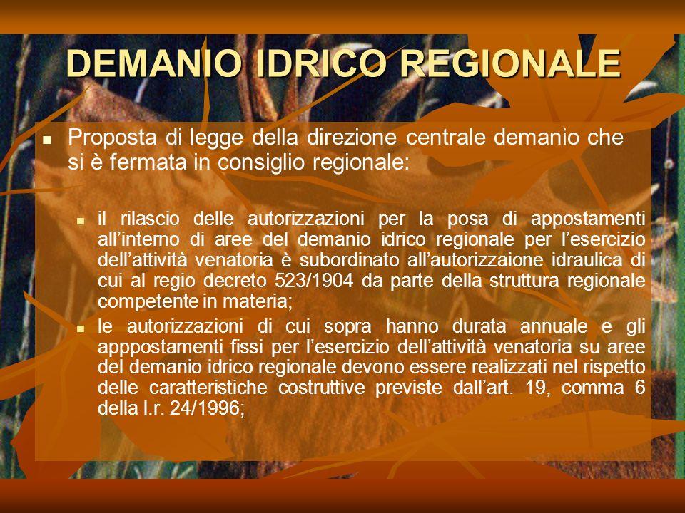 DEMANIO IDRICO REGIONALE