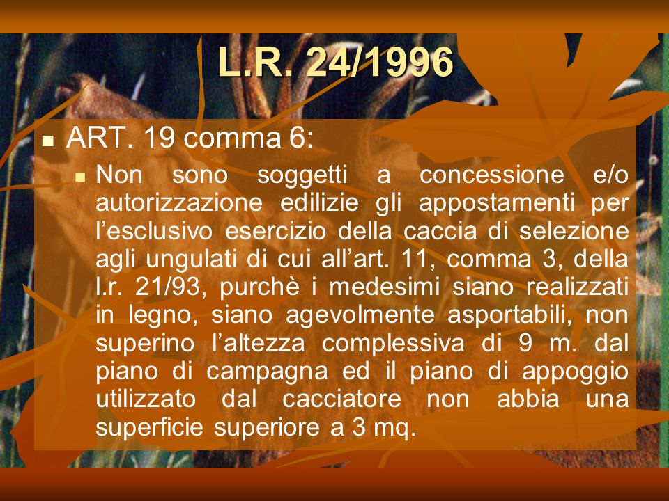 L.R. 24/1996 ART. 19 comma 6: