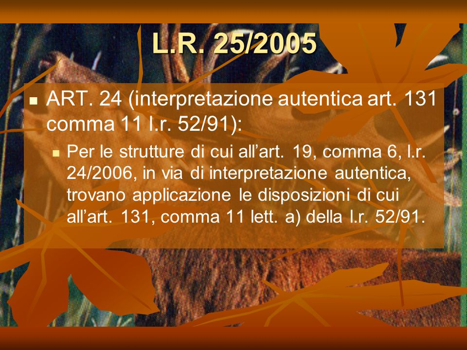 L.R. 25/2005 ART. 24 (interpretazione autentica art. 131 comma 11 l.r. 52/91):