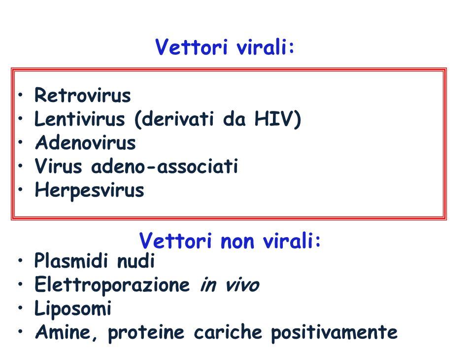 Vettori virali: Vettori non virali: Retrovirus