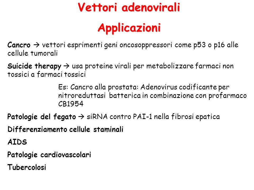 Vettori adenovirali Applicazioni