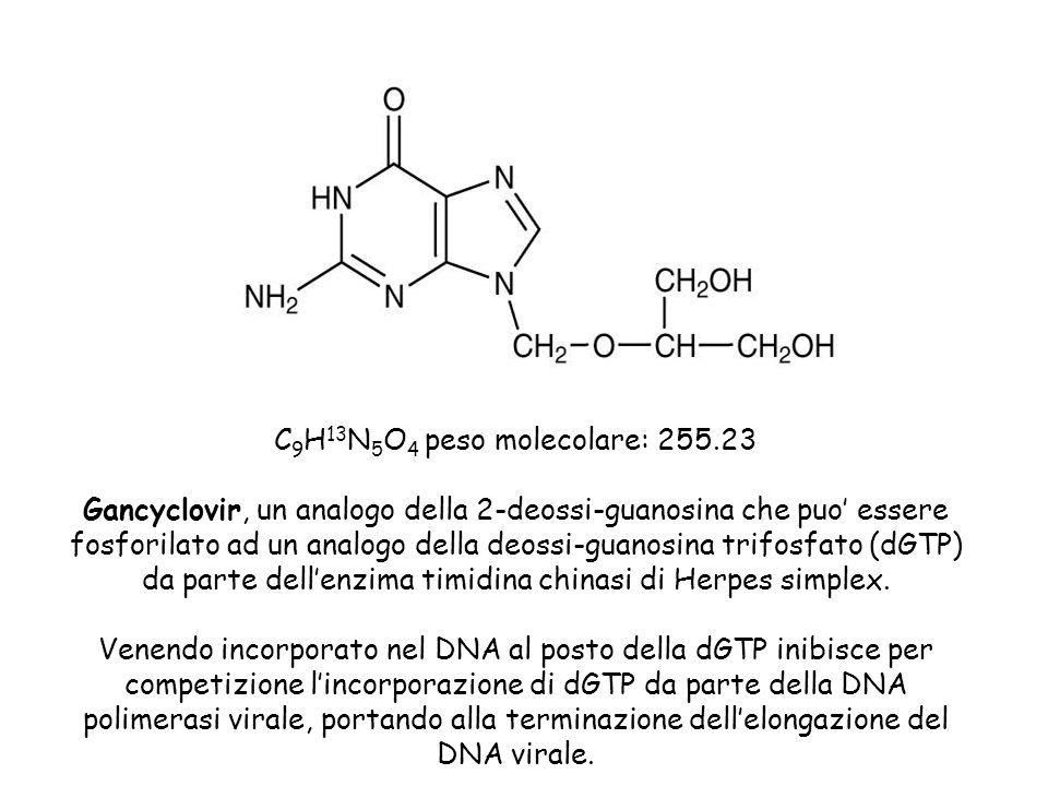 C9H13N5O4 peso molecolare: 255.23