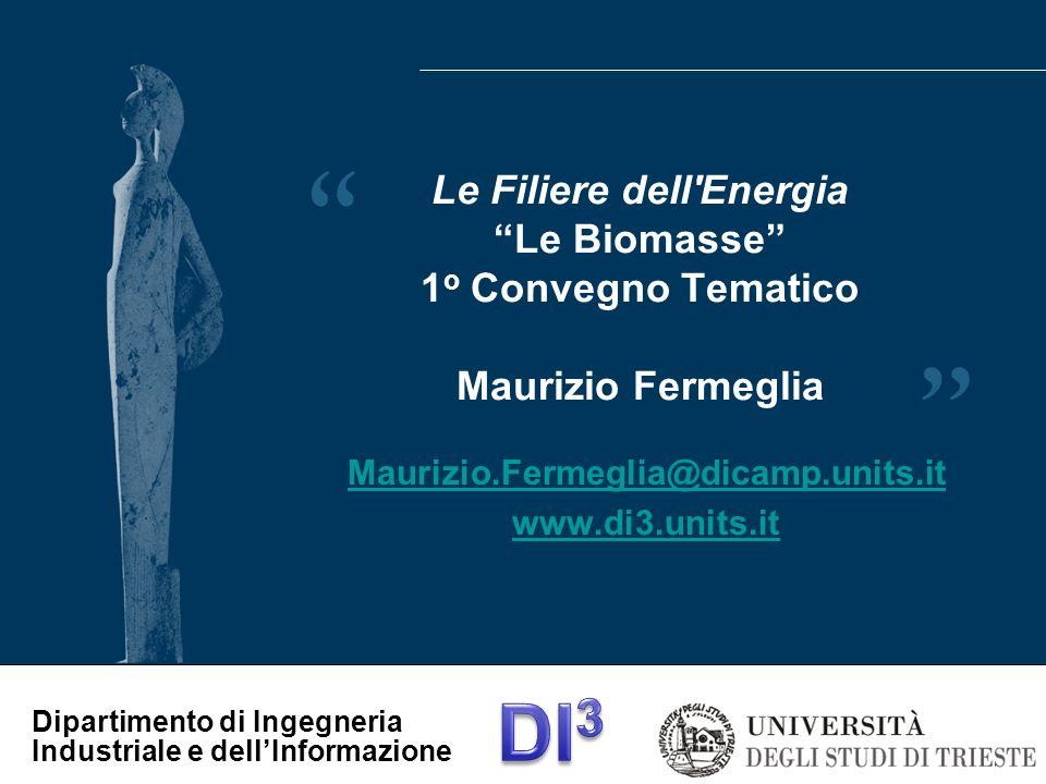 Maurizio.Fermeglia@dicamp.units.it www.di3.units.it