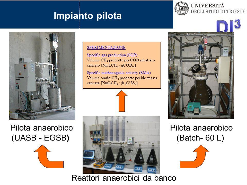 Impianto pilota Pilota anaerobico (UASB - EGSB)