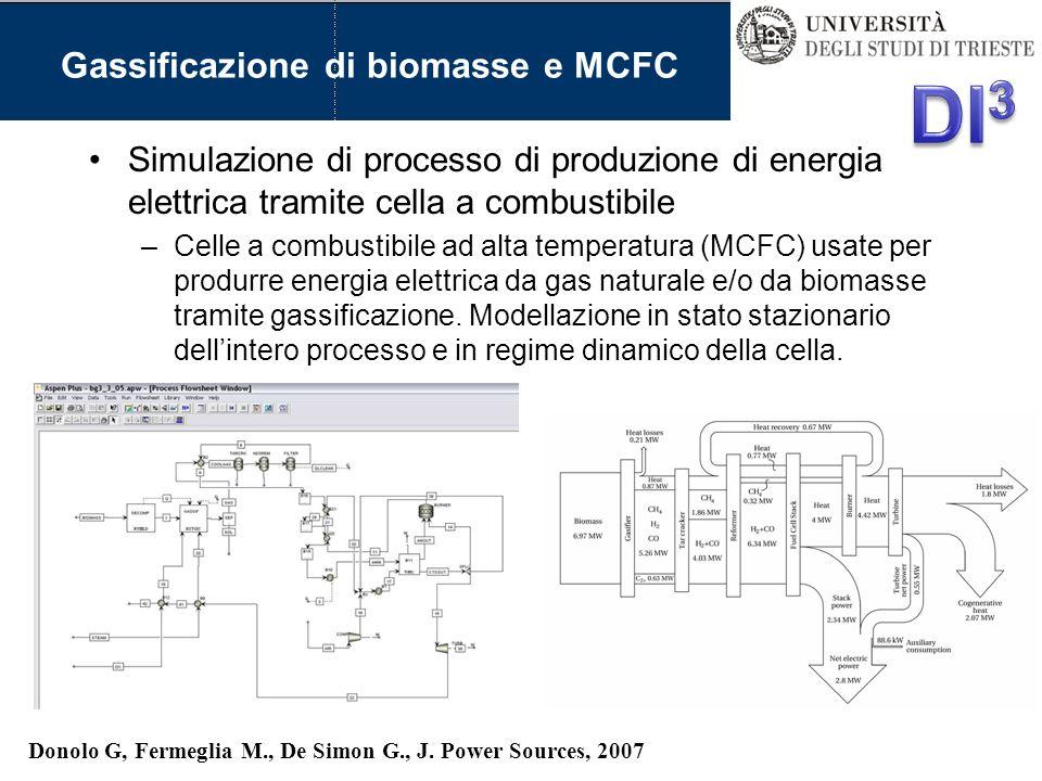 Gassificazione di biomasse e MCFC