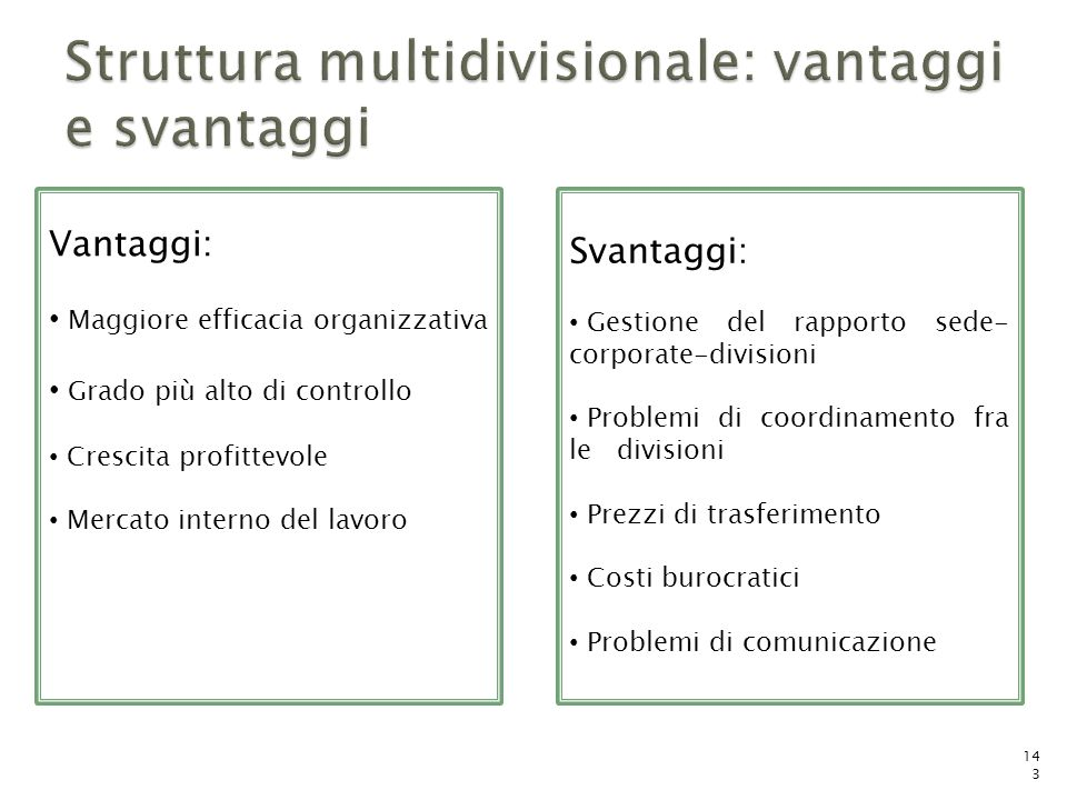 Struttura multidivisionale: vantaggi e svantaggi