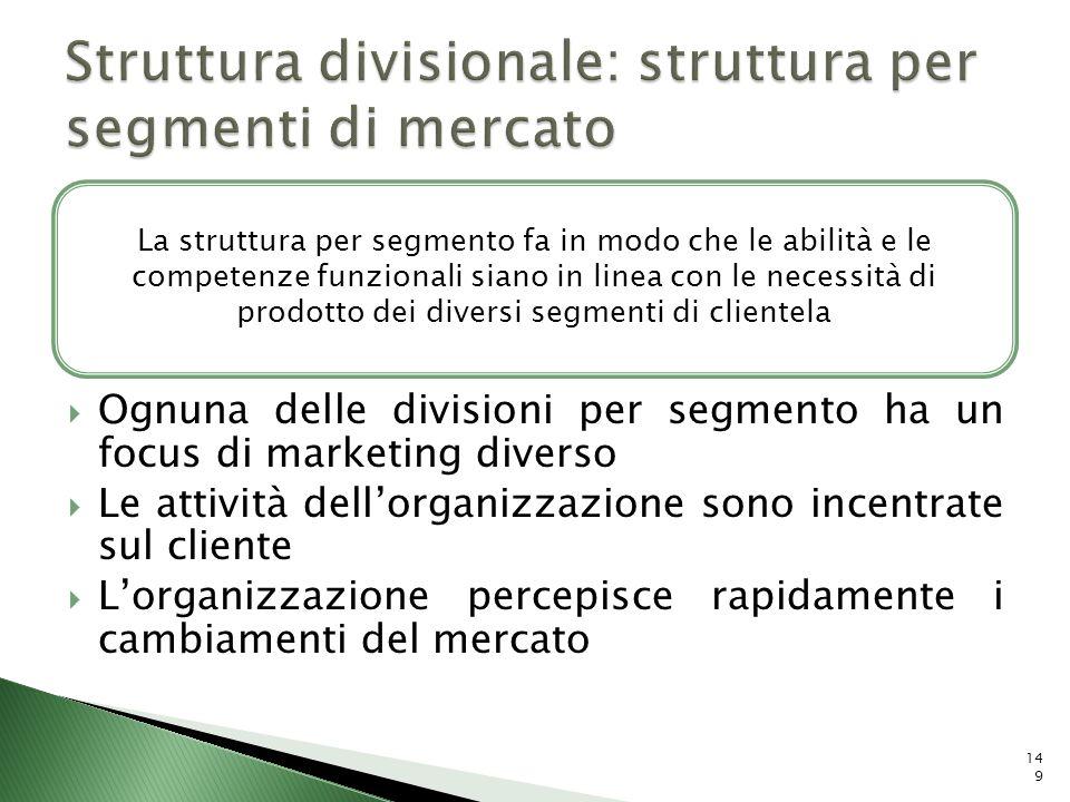 Struttura divisionale: struttura per segmenti di mercato